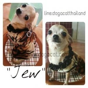 น้องจิ๋วกับเสื้อสุนัข เสื้อหมา เสื้อผ้าหมา เสื้อแมว เสื้อน้องหมา เสื้อผ้าสุนัข ชุดเดรสลายเสือเปิดไหล่ ลายพาดกลอน