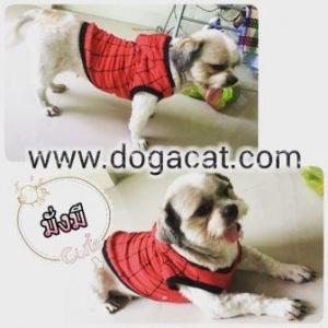 น้องมั่งมีใส่เสื้อสุนัข เสื้อหมา เสื้อผ้าหมา เสื้อแมว เสื้อผ้าสุนัข เสื้อยืด ลายspider