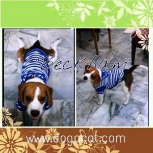 น้องbeckhamเสื้อสุนัข เสื้อหมา เสื้อน้องหมา เสื้อผ้าหมา เสื้อแมว เสื้อผ้าสุนัข ชุดทหารเรือ สีน้ำเงิน