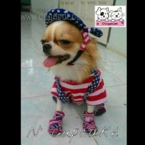 combo set เสื้อสุนัข เสื้อหมา เสื้อน้องหมา เสื้อผ้าสุนัข เสื้อผ้าหมา เสื้อแมว ชุดเอี๊ยมยืด Polka Dot ลายสหรัฐ หมวกสุนัขมีหู