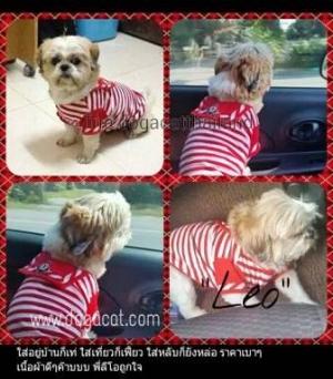 เสื้อสุนัข เสื้อหมา เสื้อน้องหมา เสื้อผ้าหมา เสื้อแมว เสื้อผ้าสุนัข ชุดทหารเรือ สีแดง