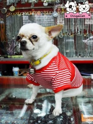 น้องพอใจ เสื้อสุนัข ตาข่ายV2 สีแดง