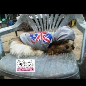 รีวิวเสื้อสุนัข เสื้อหมา เสื้อผ้าหมา เสื้อน้องหมา เสื้อแมว เสื้อผ้าสุนัข เสื้อยืด ลาย london สีเทา