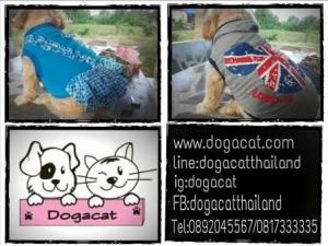 review เสื้อสุนัข เสื้อยืด ลาย london สีเทา