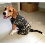 น้องอาร์เทอร์ เสื้อสุนัข เสื้อหมา เสื้อแมว เอี๊ยมยืดทหาร