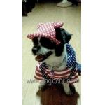 รีวิวหมวกสุนัขมีหู หมวกหมามีหู หมวกน้องหมามีหู หมวกแมวมีหู ลายดาว สีแดง