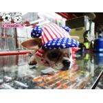 น้องพอใจ หมวกสุนัขมีหู ลายธงชาติสหรัฐ