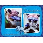 บ้านแก๊งค์จอร์ หมวกสุนัขมีหู ลายธงชาติสหรัฐ
