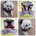 รีวิว เสื้อสุนัข ชุดโกโบริ