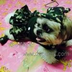 น้องมีตังส์ เสื้อสุนัข เสื้อหมา เสื้อน้องหมา เสื้อผ้าสุนัข เสื้อผ้าหมา เสื้อแมว ชุดเดรสทหาร กับหมวกสุนัข