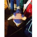น้องทาโร่กับเสื้อสุนัข เสื้อหมา เสื้อน้องหมา เสื้อผ้าหมา เสื้อแมว เสื้อผ้าสุนัข ชุดเอี๊ยมยืด Polka Dot ลายสหรัฐ