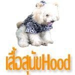 เสื้อสุนัข เสื้อหมา เสื้อแมว มีhood