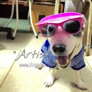 น้องArtistใส่เสื้อสุนัข เสื้อหมา เสื้อน้องหมา เสื้อผ้าหมา เสื้อแมว เสื้อผ้าสุนัข ตาข่ายV2 สีน้ำเงิน