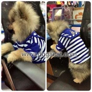 รีวิวเสื้อสุนัข เสื้อหมา เสื้อน้องหมา เสื้อผ้าหมา เสื้อแมว เสื้อผ้าสุนัข ชุดทหารเรือ สีน้ำเงิน