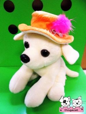ตัวอย่าง หมวกสุนัข ทรงปีกบาน สีส้ม