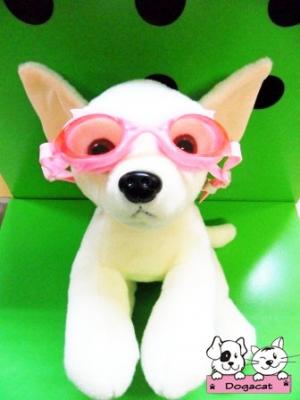 ตัวอย่าง แว่นดำน้ำสุนัข สีชมพู