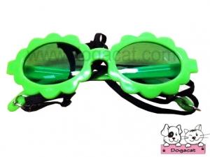 แว่นสุนัข แว่นหมา แว่นน้องหมา แว่นแมว แฟนซี สีเขียว