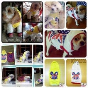review เสื้อสุนัข เสื้อยืด ลาย london สีเหลือง