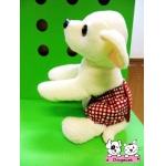 กางเกงอนามัยสุนัข กางเกงอนามัยหมา กางเกงอนามัยแมว สก๊อตแดง