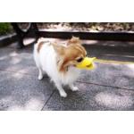 ปากเป็ดสุนัข ปากเป็ดหมา  ปากเป็ดน้องหมา ที่ครอบปากสุนัข ที่ครอบปากหมา ที่ครอบปากน้องหมา ปากเป็ดครอบปากสุนัข ปากเป็ดครอบปากหมา ปากเป็ดครอบปากน้องหมา สีชมพูโอรสV2