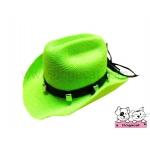 หมวกสุนัข หมวกหมา หมวกแมว หมวกน้องหมา คาวบอยV3 สีเขียว