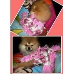 น้องริบบิ้น เสื้อสุนัข ชุดเดรส ลายดอก สีชมพู v2