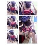 น้องเฮงเฮง เสื้อสุนัข ชุดเอี๊ยมยืด Polka Dot ลายสหรัฐ
