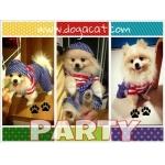 รวมน้อง party เสื้อสุนัข ชุดเอี๊ยมยืด Polka Dot ลายสหรัฐ