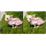 reviews เสื้อสุนัข เดรสสายคล้องราตรี สีชมพู